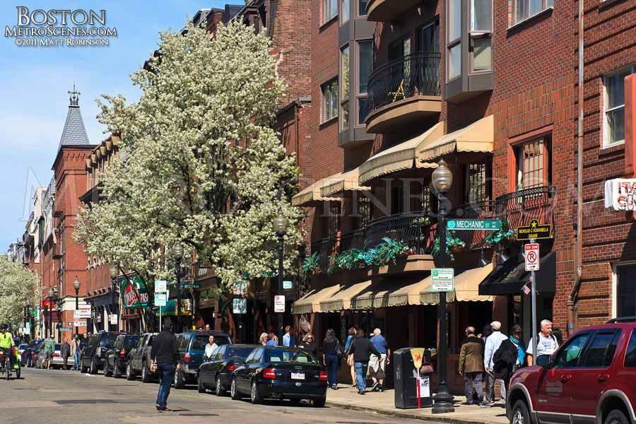 Boston's North End in the Spring