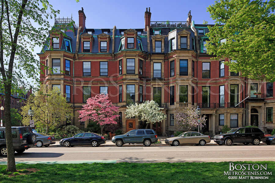 Back Bay brownstones in the springtime