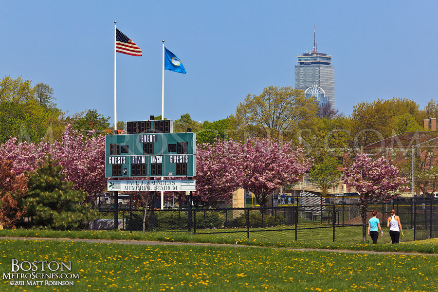 Southie in Spring
