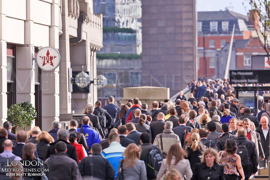 The London rat race