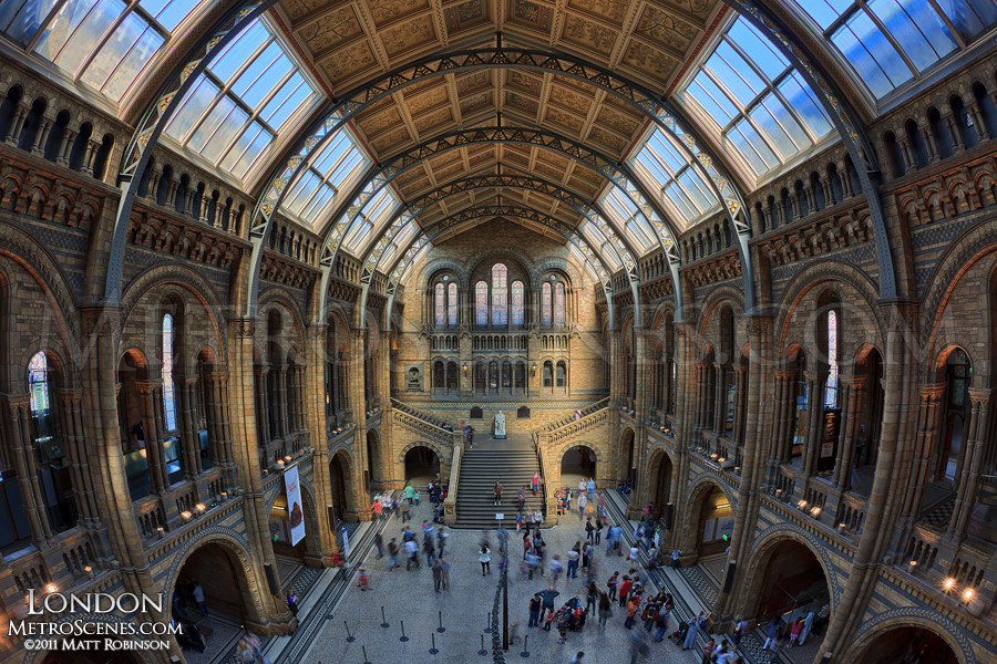 Interior of London's Museum of Natural History