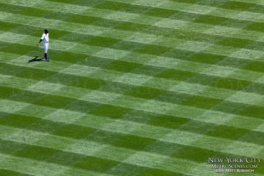 Yankee Stadium Grass