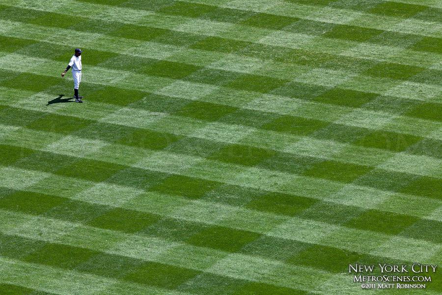 Yankee Stadium Grass