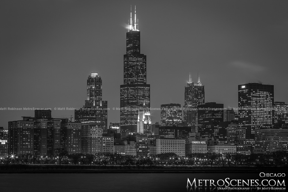Chicago Skyline Black and White Sears Tower