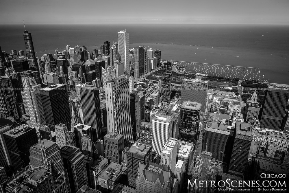 View from Sears Tower Black and White