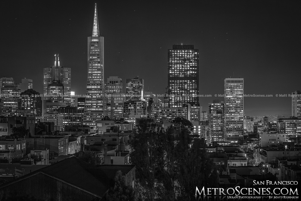 City of San Francisco at night Black and White