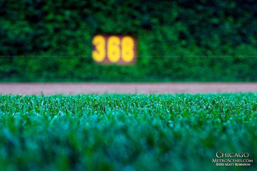 Wrigley Field Grass