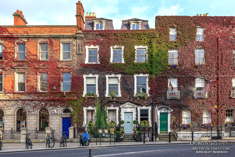 Ivy covers Georgian buildings along St. Stephens Green
