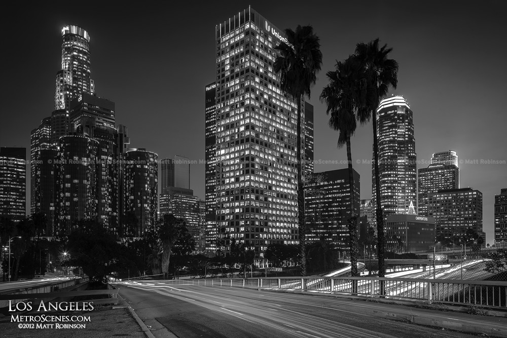 Nighttime Black and White Los Angeles Skyline with Palm Trees
