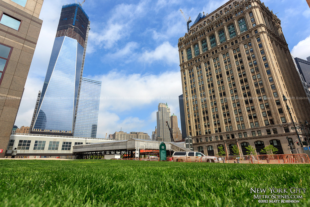 One World Trade Center with nearby grass
