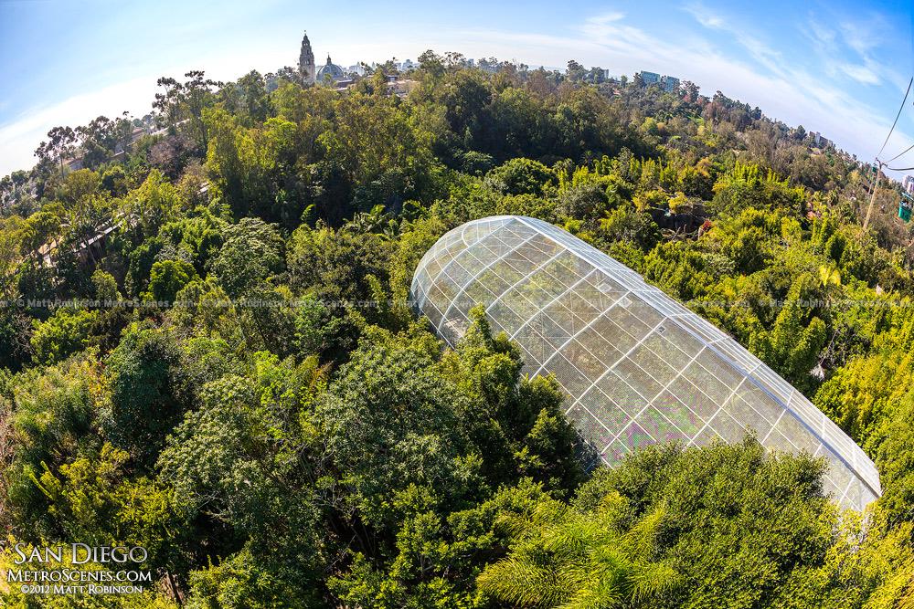 San Diego Zoo aviary from Skyfari aerial tramway