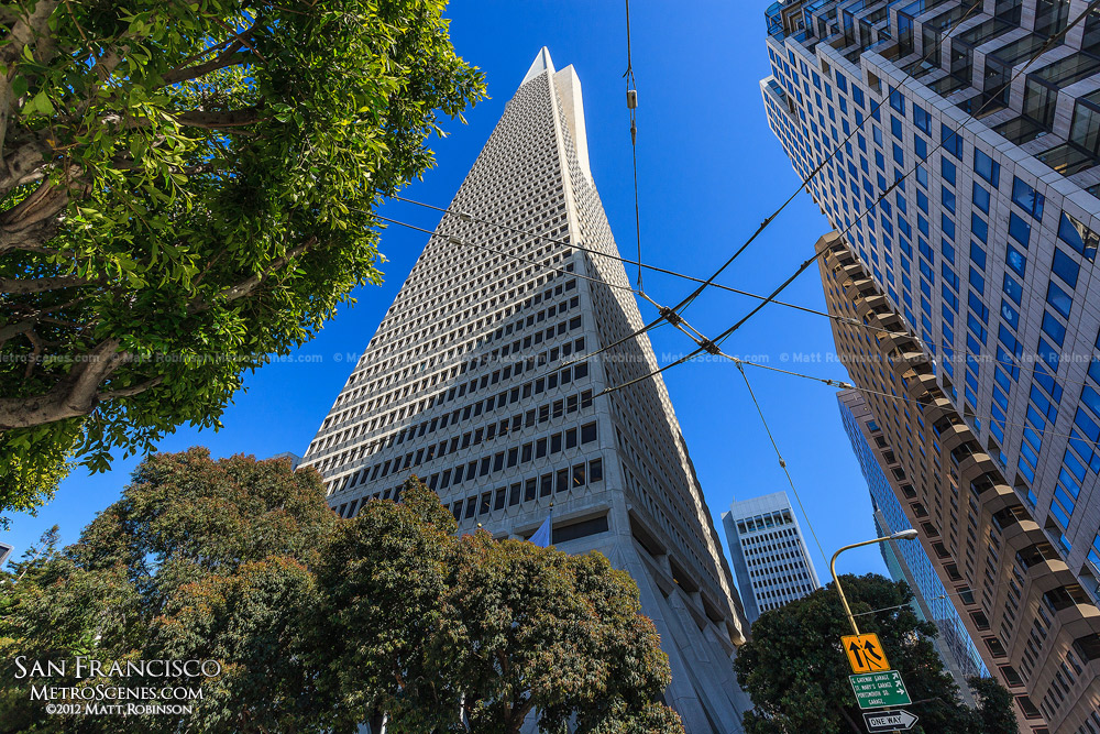 Transamerica Pyramid from the base