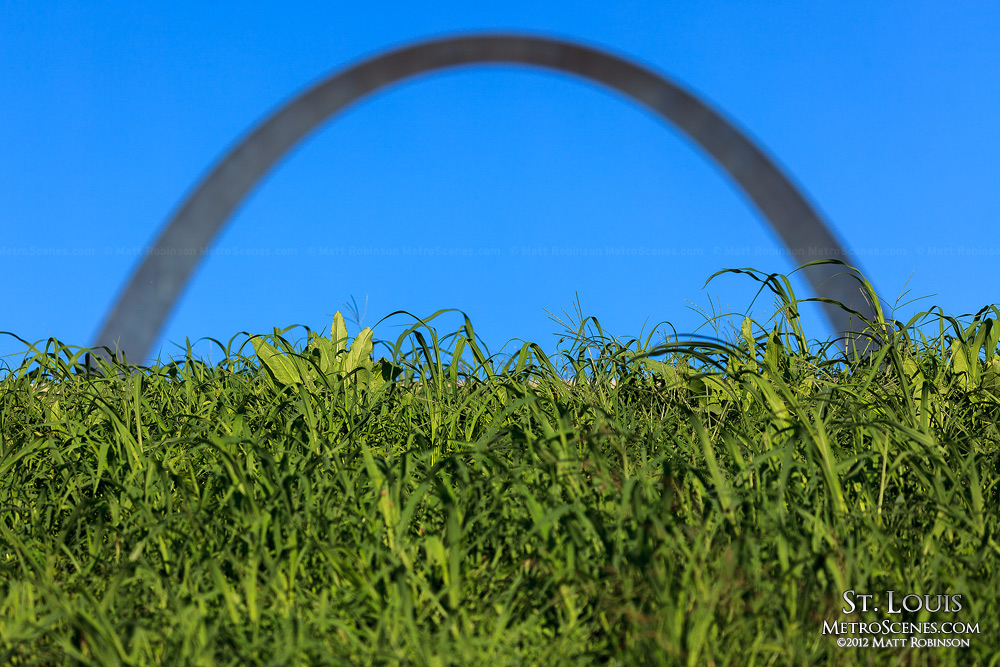 St. Louis arch with grass
