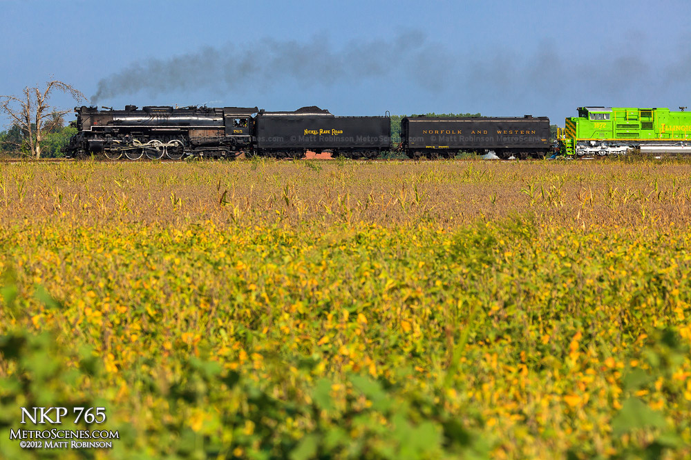 Steam Engine NKP 765 and a field of yellow near Morrisonville, Illinois