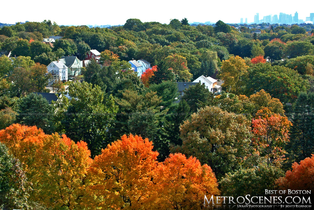 Fall colors over Boston