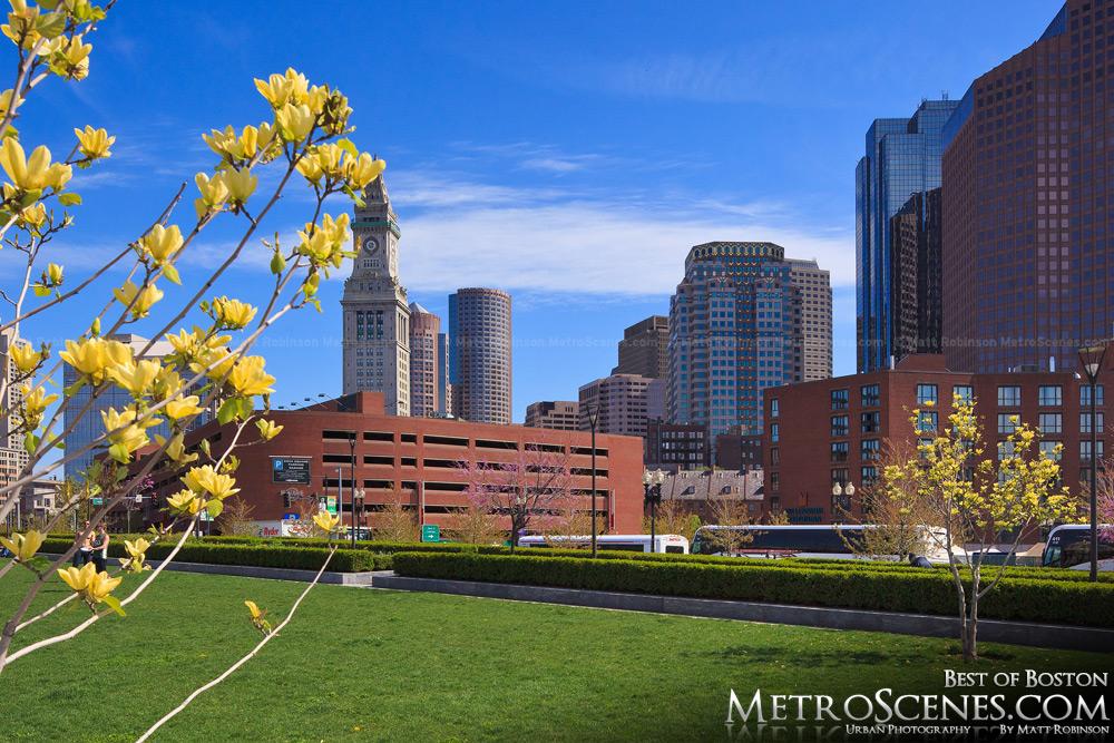 Boston in the springtime