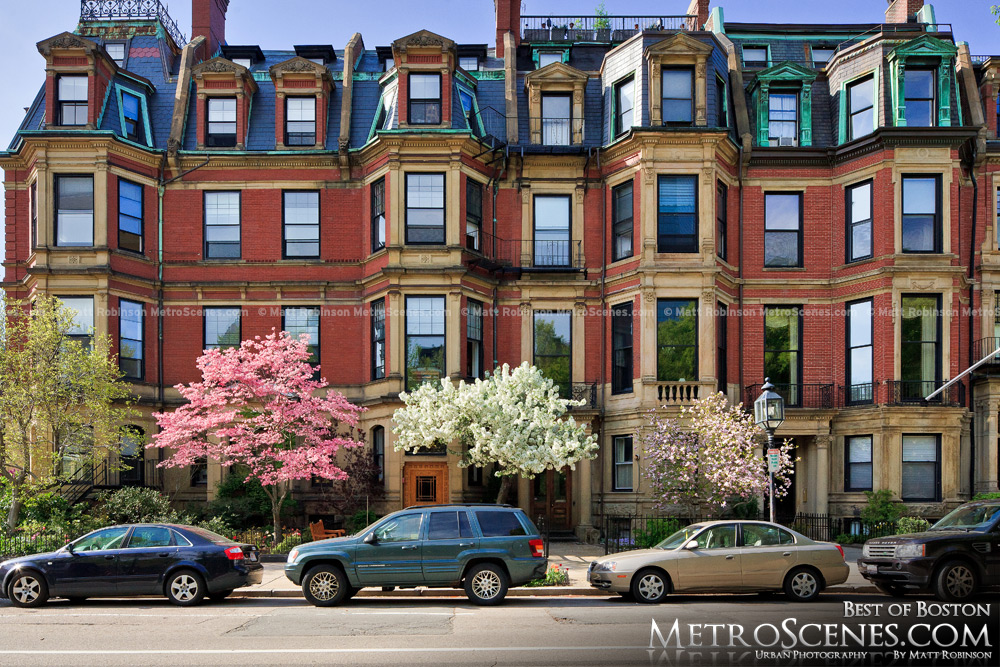Bay Bay Brownstones with flowering spring trees
