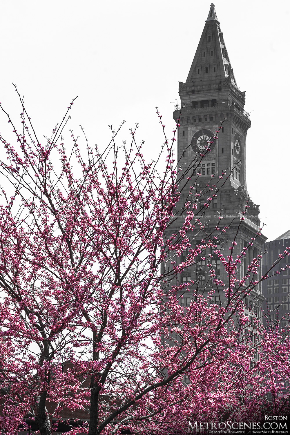 Black and White and Pink Custom House Boston