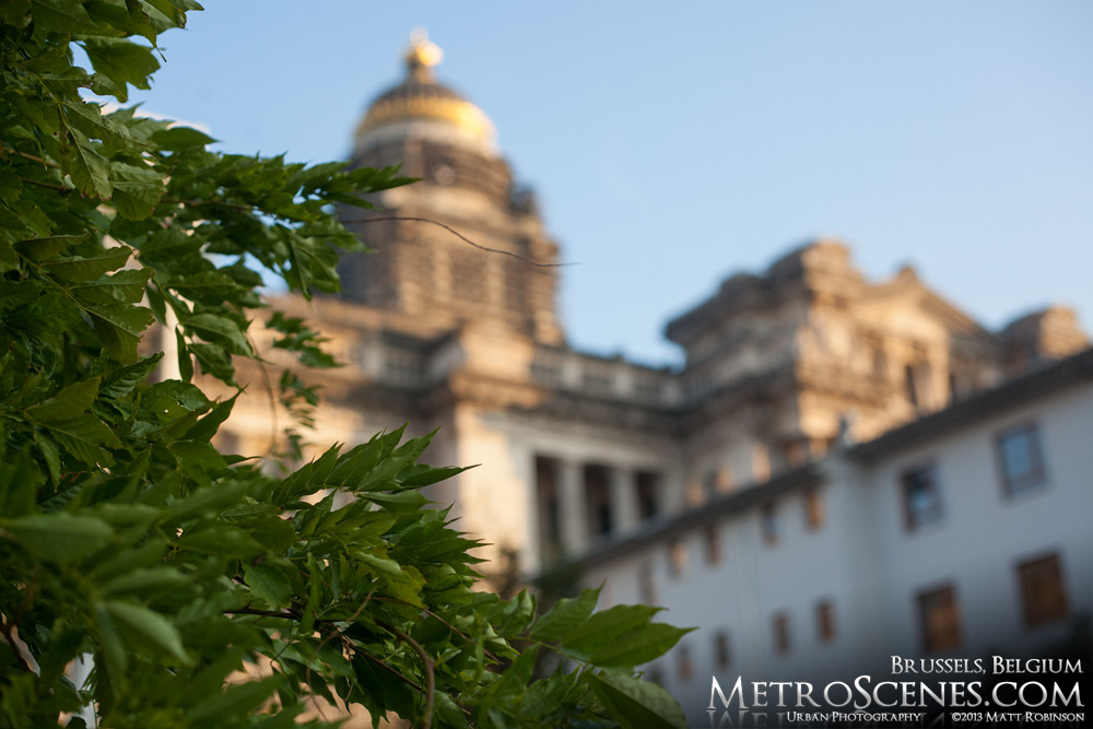 Trees with Palais de Justice