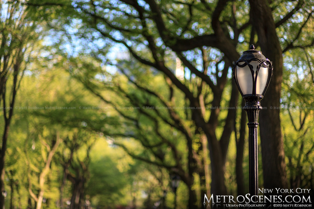 Street light along the Central Park Promenade