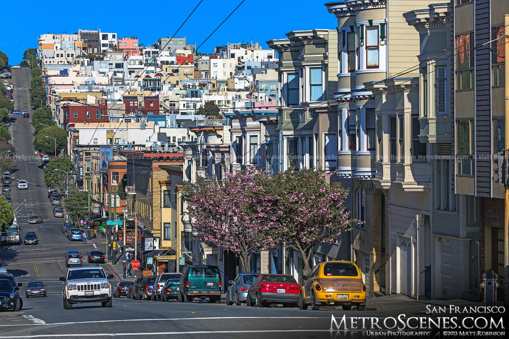 San Francisco in the spring