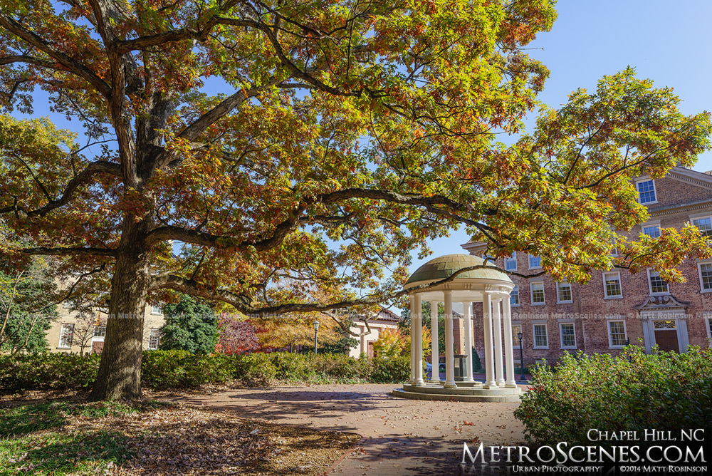 Autumn Tree and the Old Well at University of North Carolina