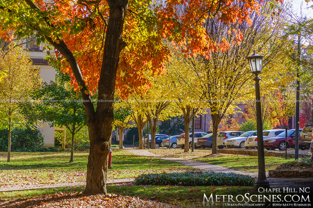 Fall on the Campus of University of North Carolina