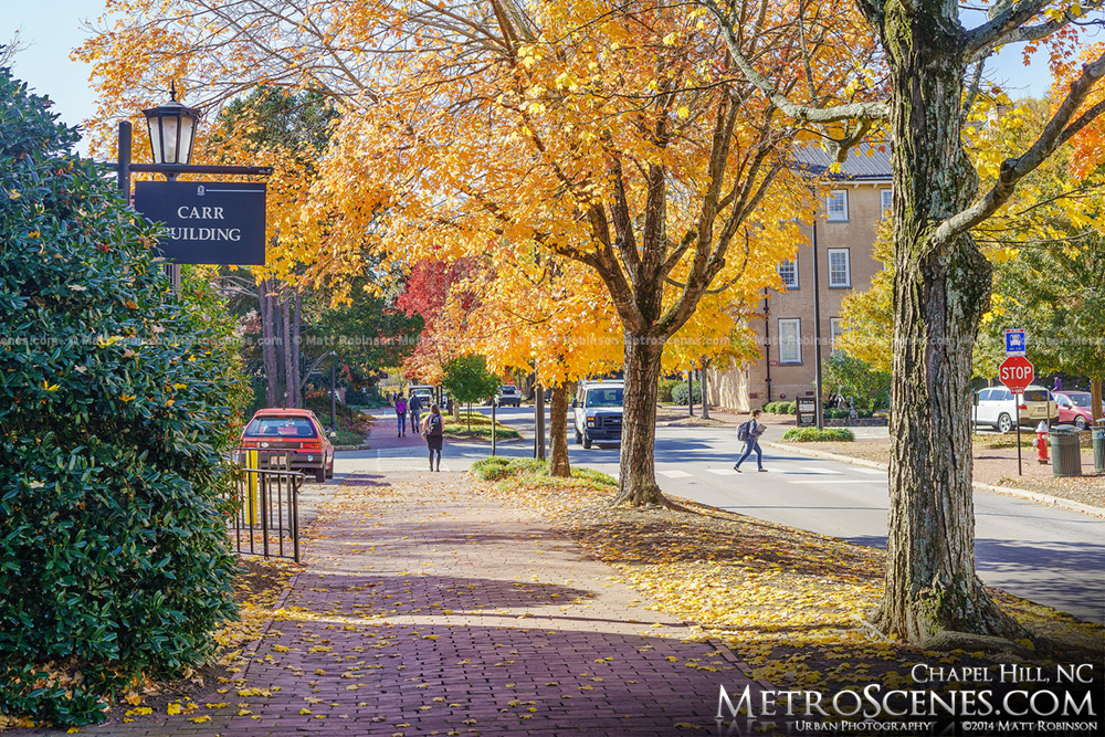 Cameron Avenue in autumn in Chapel Hill