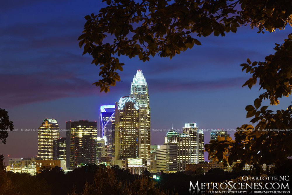 Cordelia Park view of Charlotte at night