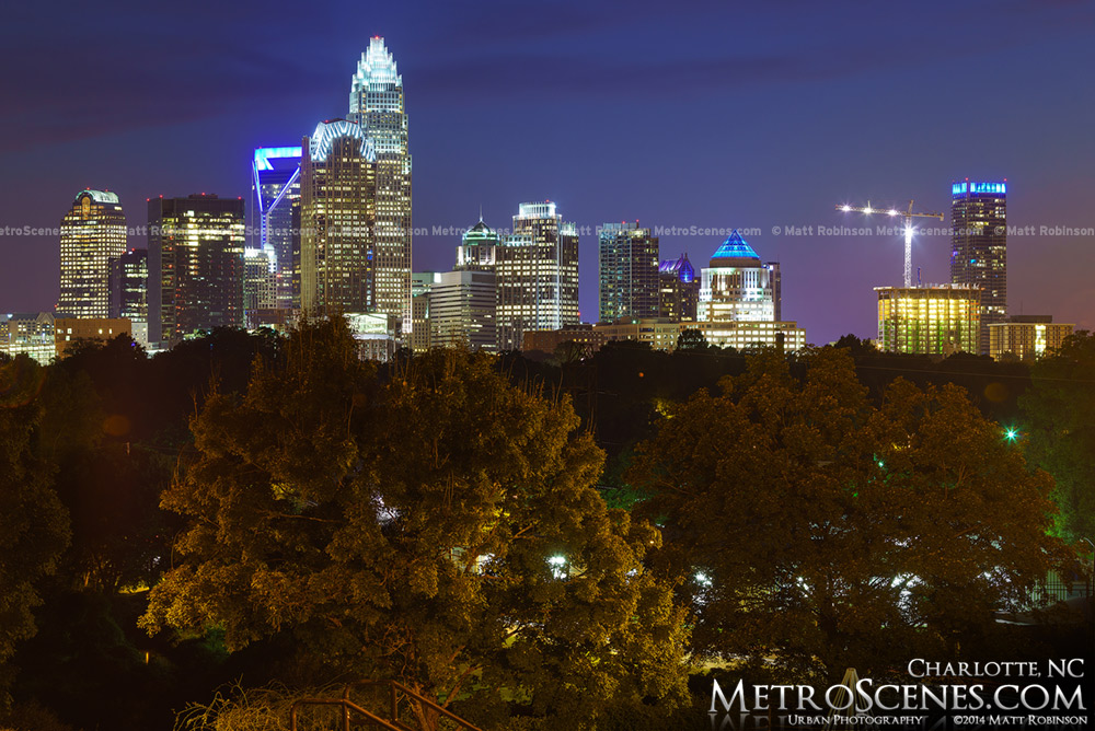 Charlotte from the hills of Cordelia Park