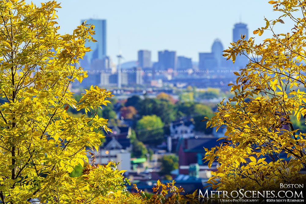 Fall colors with the Boston Back Bay Skyline