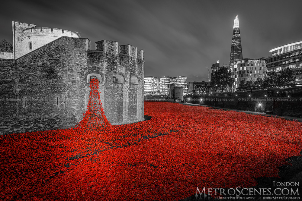 London Poppies Black and White and Red Tower of London and Shard