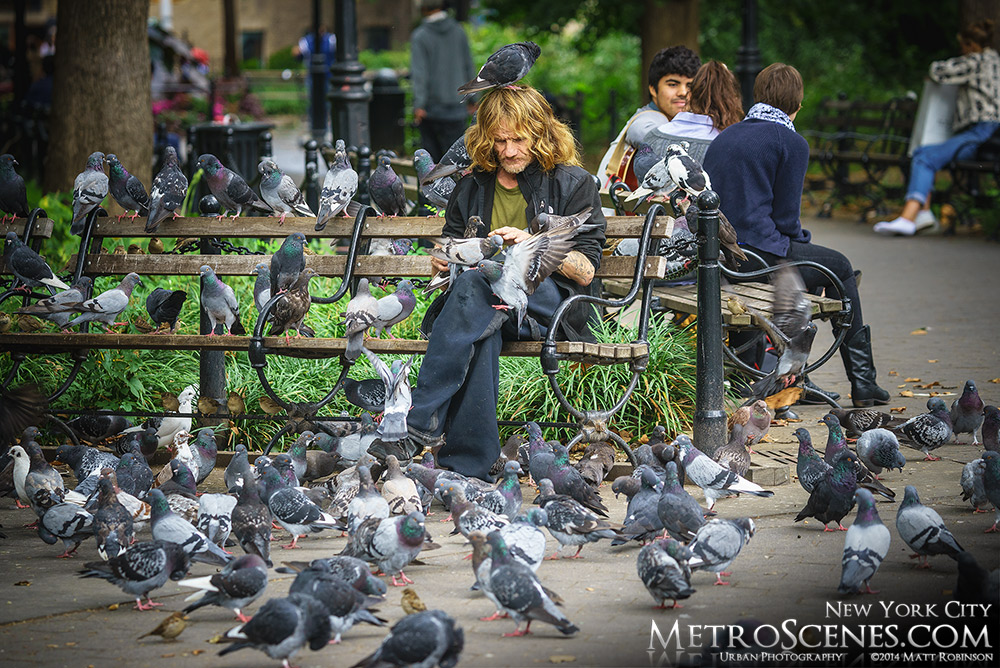 Pigeons cover a man in Washington Square Park