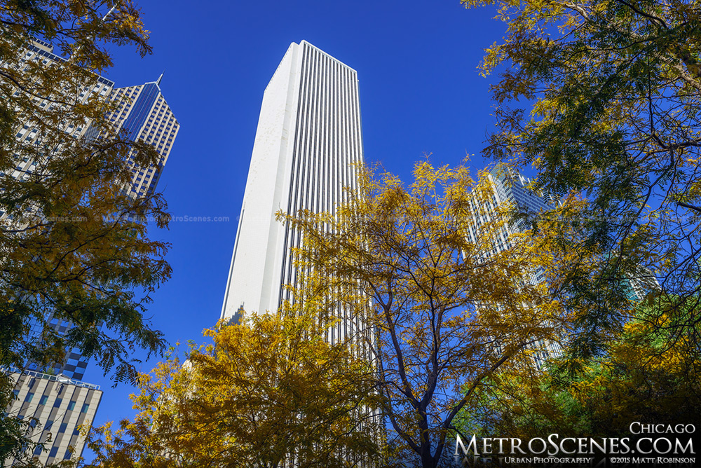 Aon Center with Fall Leaves