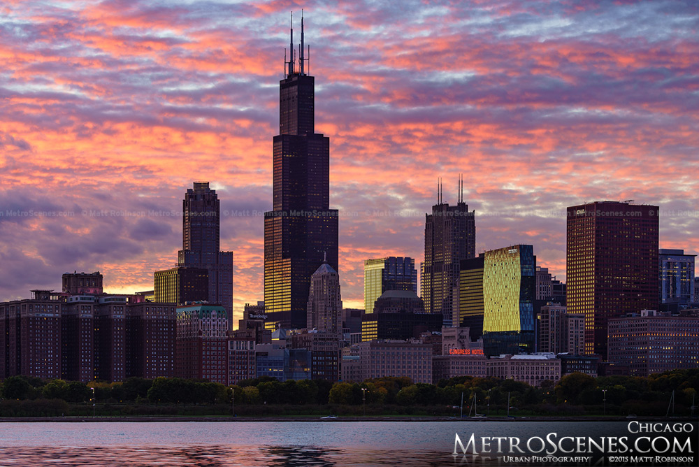 Chicago skyline with pink sunset
