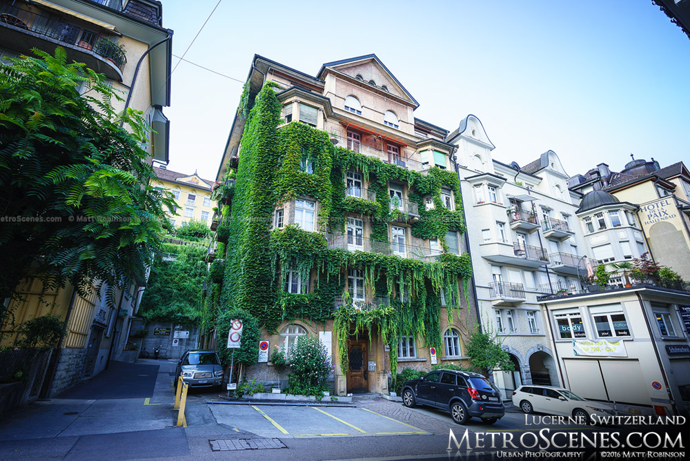 Ivy Covered building in Lucerne