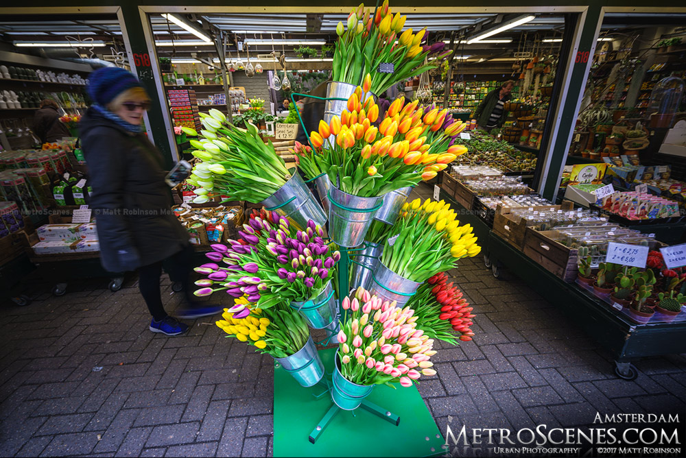 Tulips at Bloemenmarkt