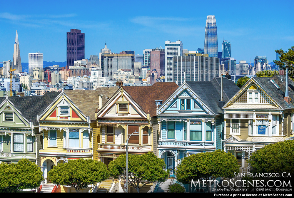 The Painted Ladies with the San Francisco Cityscape 2019