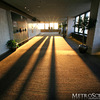Sunset shadows in the Prudential Observatory